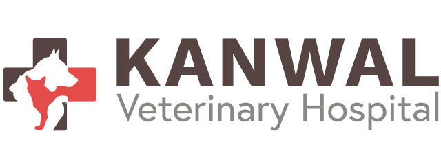 Kanwal Veterinary Hospital Homepage